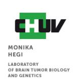 04_CHUV_Brain_tumor